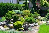 Předzahrádka u nás v zahradnictví